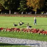 Schlosspark_Nymphenburg_12