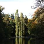 Schlosspark_Nymphenburg_31