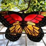 Tropische_Schmetterlinge_02